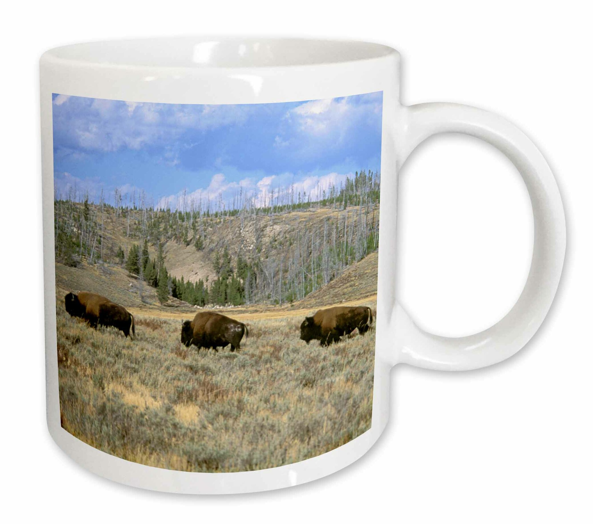 East Urban Home Usa Wyoming Stone Np Bison Tom Vezo Coffee Mug Wayfair