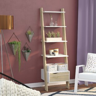 Mateer Ladder Bookcase