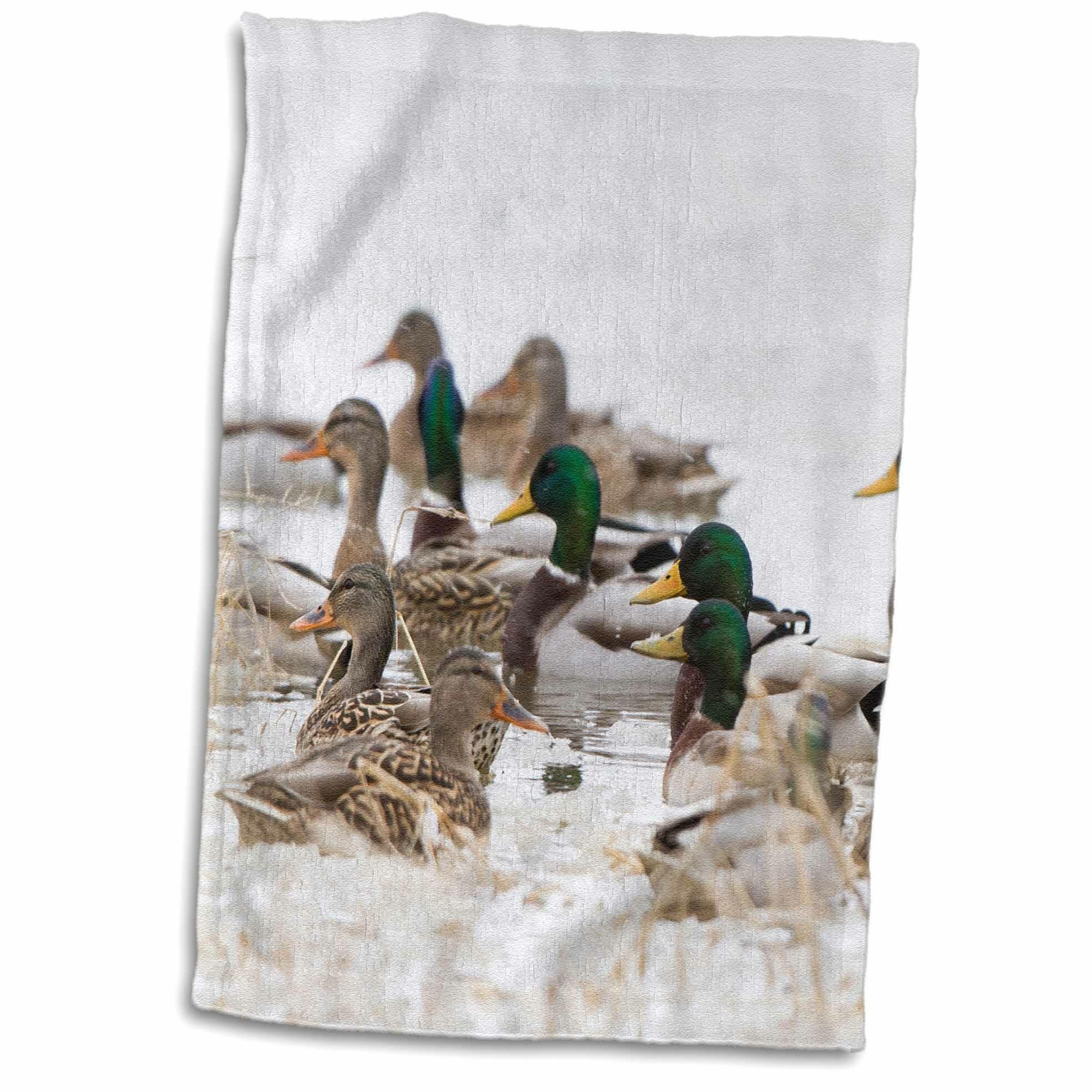 East Urban Home Arroyo Mallards In Wetland In Winter Marion Illinois Usa Hand Towel Wayfair