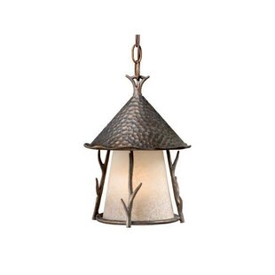 Budget Pomonok 1-Light Outdoor Pendant By Loon Peak