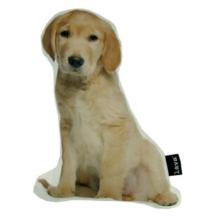 Golden Retriever Puppy Shaped Indoor/Outdoor Throw Pillow by lava Great price