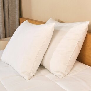 Draco 600 Fill Power Firm Down And Feathers Bed Pillows (Set of 2)