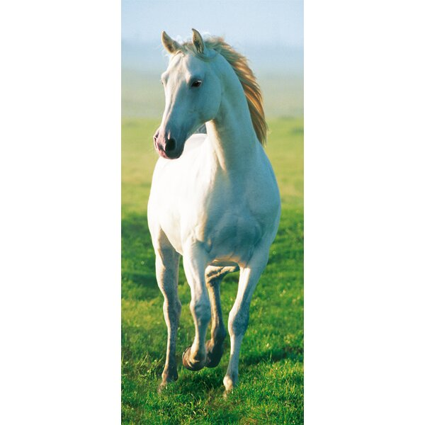 Horse Wall Murals brewster home fashions ideal decor horse wall mural & reviews
