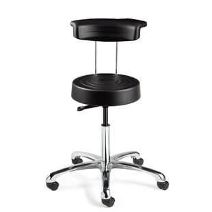 ErgoLux Height Adjustable Stool with Backrest