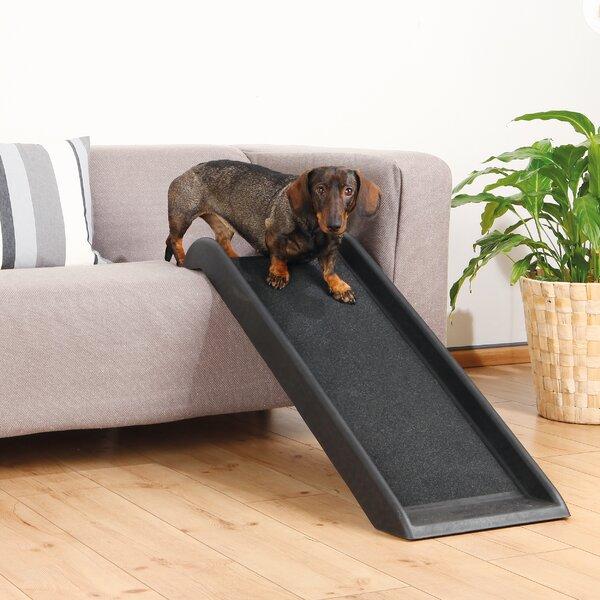 Trixie Safety 39 Quot Pet Ramp Amp Reviews Wayfair
