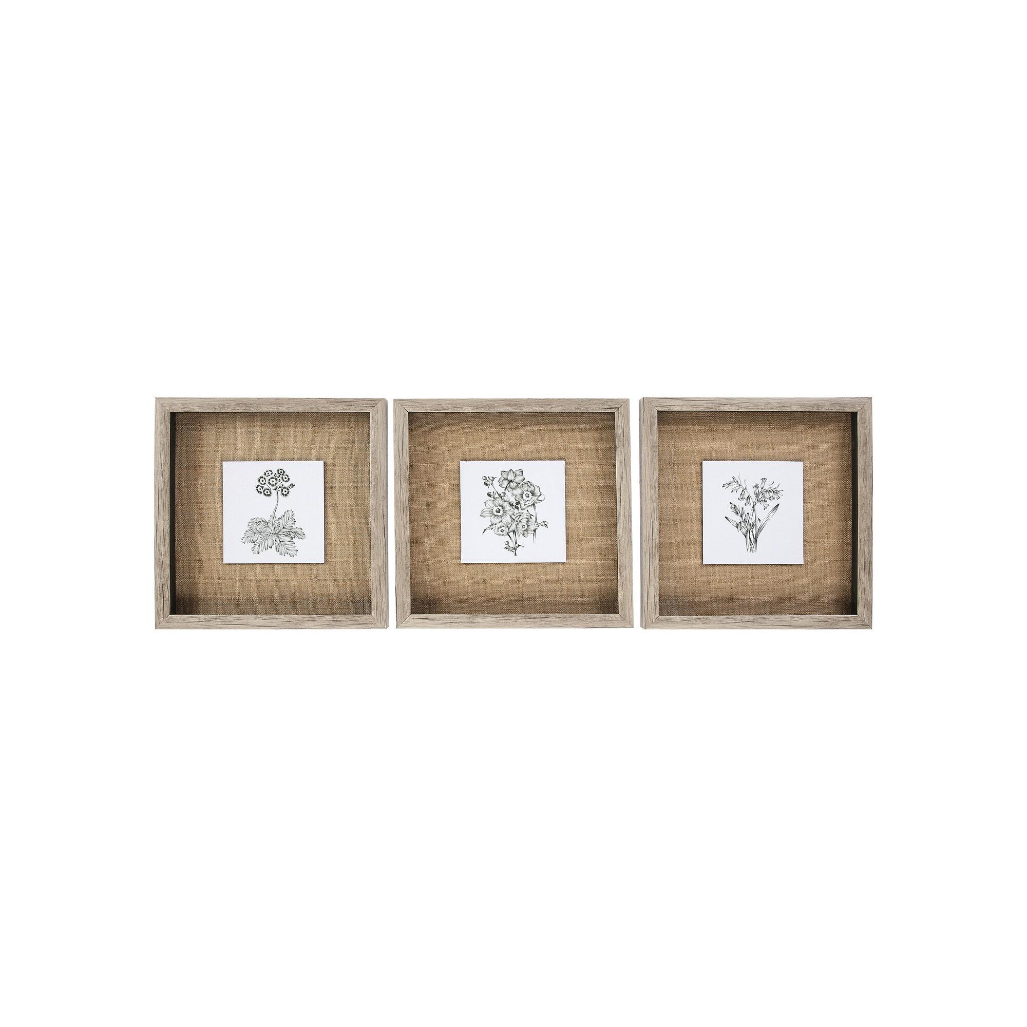 Three Posts Monochrome Botanical 3 Piece Picture Frame Drawing Print Set Reviews Wayfair Co Uk