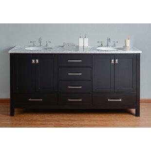 Ankney 72 Double Sink Bathroom Vanity ByBrayden Studio