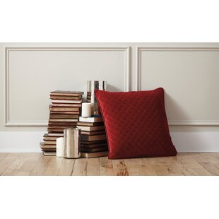 Bellinger Velvet Throw Pillow