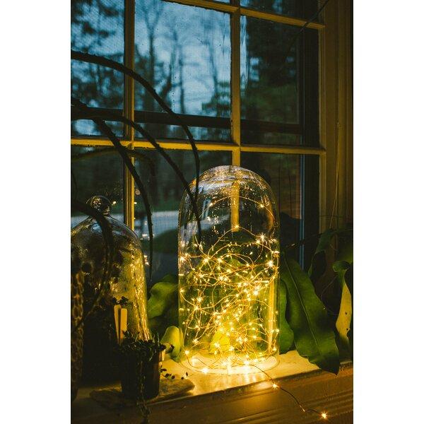 Hometown Evolution Inc 100 Light 33 Ft. Fairy String Lights & Reviews by Hometown Evolution, Inc.