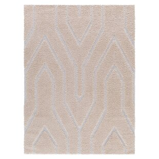 Looking for Ruiz Glam Moroccan Shag Beige/White Area Rug By Mercer41