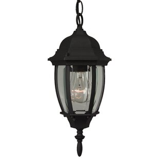 Inexpensive Oakhill 1-Light Outdoor Hanging Lantern By Charlton Home