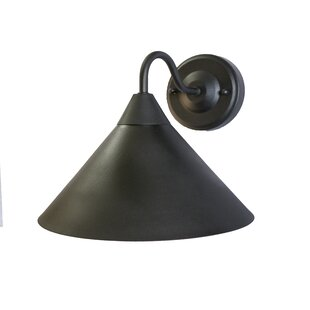 Cory 1-Light Outdoor Barn Light