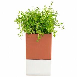 Indoor Herb Pots | Wayfair