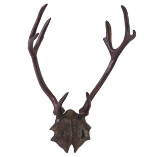Marshall Antlers Wall Décor
