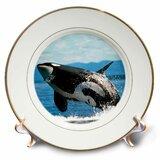 Whale Bowls Wayfair