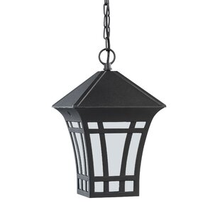 Check Prices Brette 100W 1-Light Outdoor Pendant By Bloomsbury Market