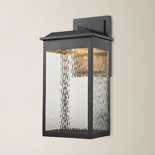 Alyn 1-Light Outdoor Wall Lantern