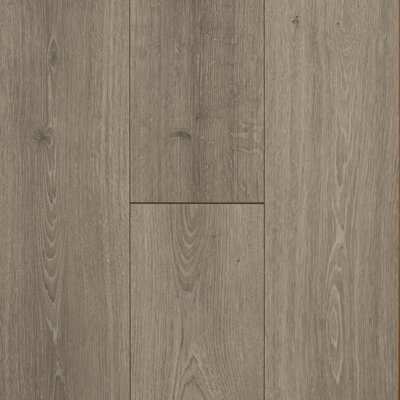 "8"" x 47"" x 12mm Oak Laminate Flooring Mohawk Flooring Color: Beachwood"