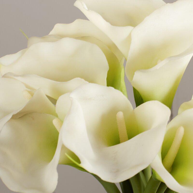 121abb556a4 Willa Arlo Interiors Calla Lily in Cylinder Silk Flower Arrangement ...