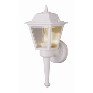 Bargain Mccray 1-Light Outdoor Sconce By Andover Mills