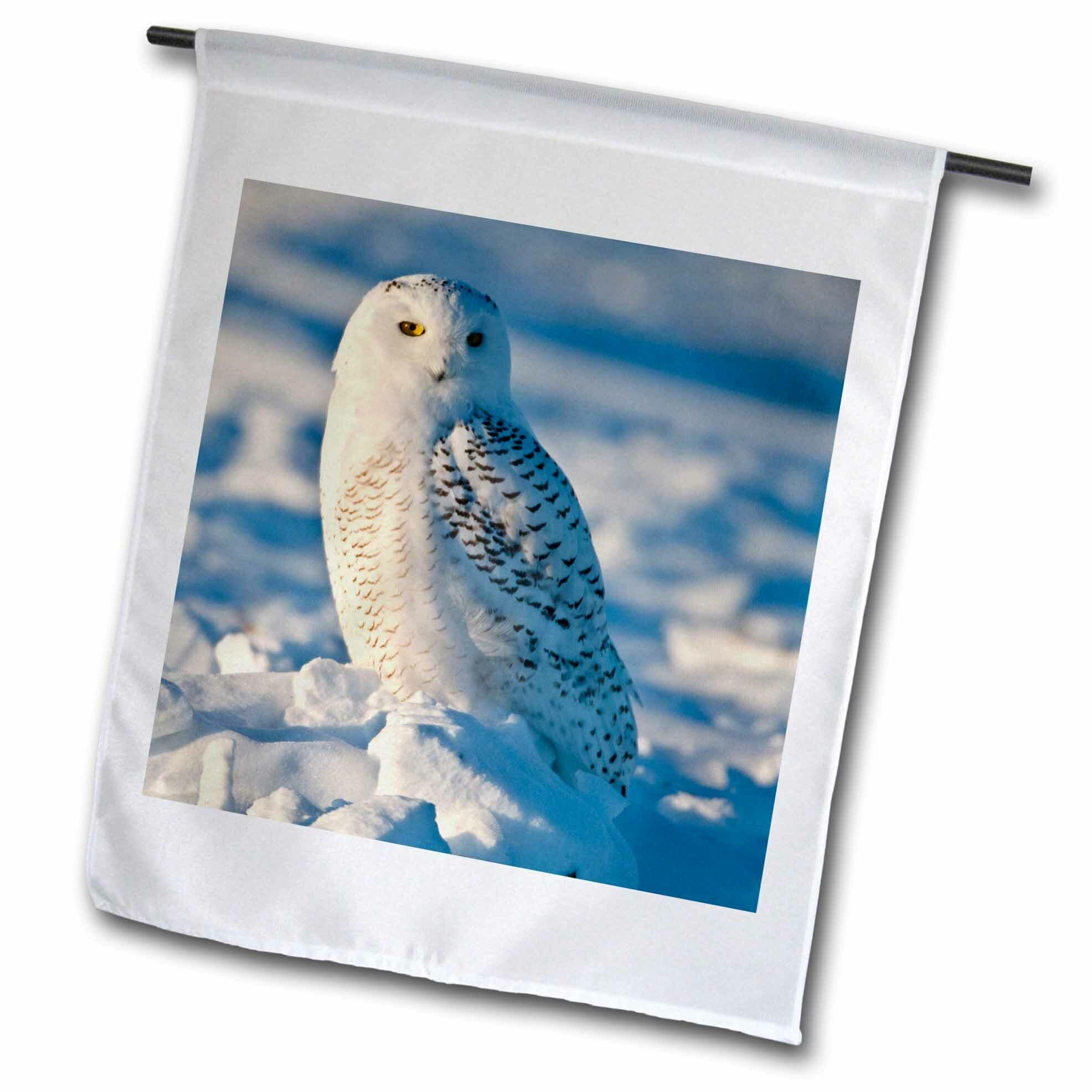 3drose Snowy Owl Perched On Snow Polyester 18 X 12 In Garden Flag Wayfair