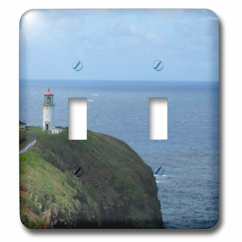 3drose Ocean Off Hawaii Painting Style 2 Gang Toggle Light Switch Wall Plate Wayfair