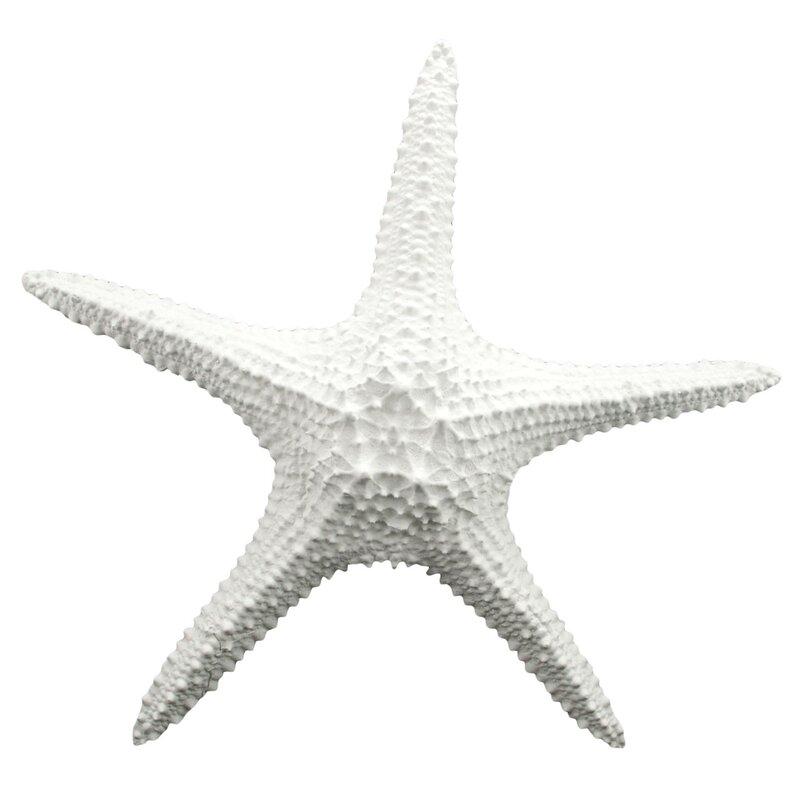 Wonderful Starfish Wall Décor