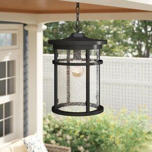 Ilene 1-Light Outdoor Hanging Lantern