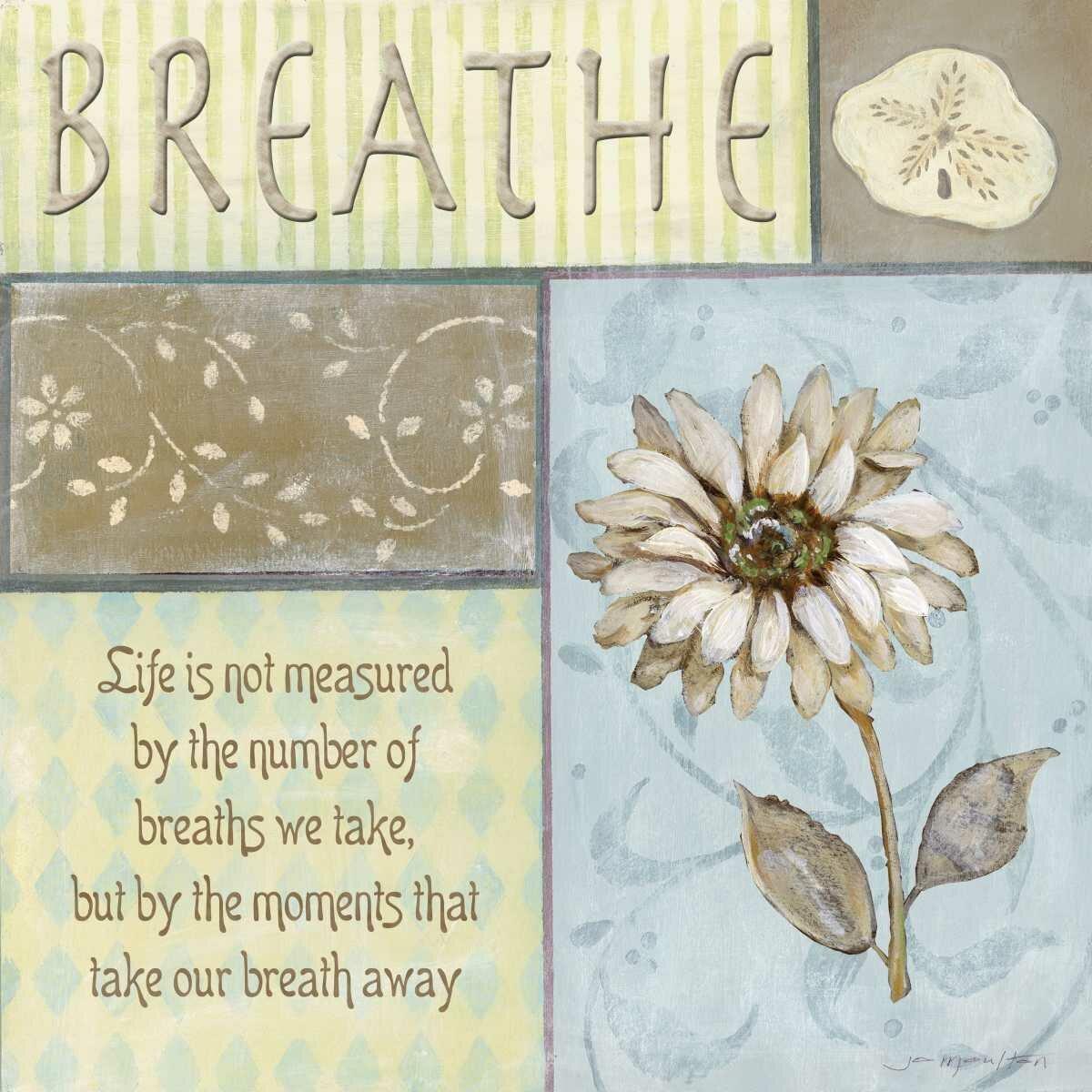 One Allium Way Breathe By Jo Moulton Wrapped Canvas Textual Art Print Wayfair