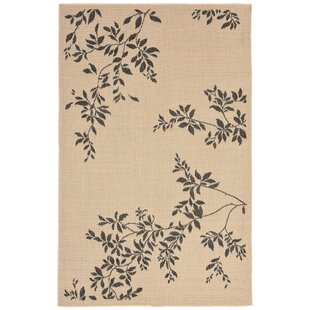 Find the perfect Aldreda Indoor/Outdoor Area Rug ByCharlton Home