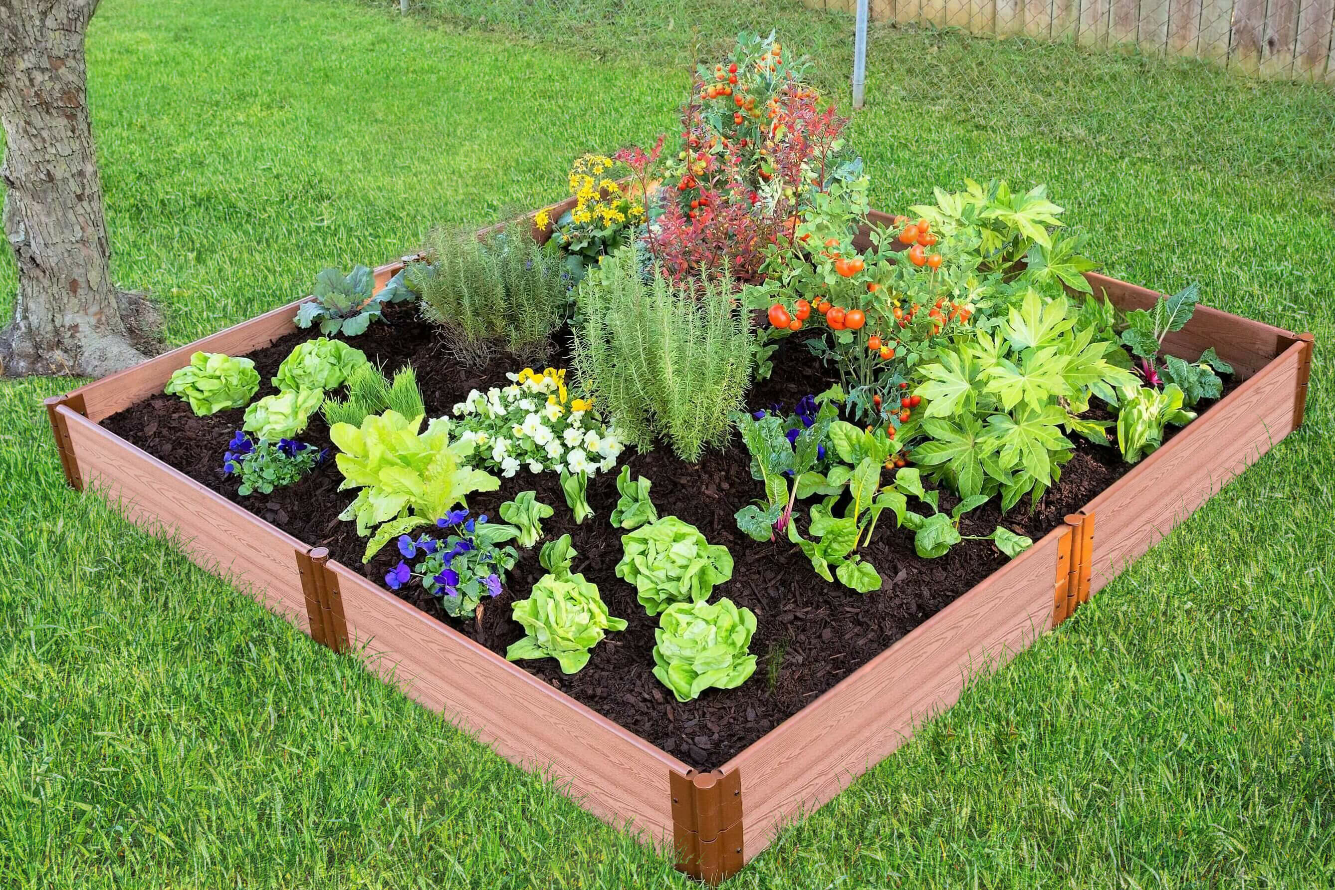 Frame It All Tool Free Classic Sienna One Inch Series 8 Ft X 8 Ft Composite Raised Garden Wayfair