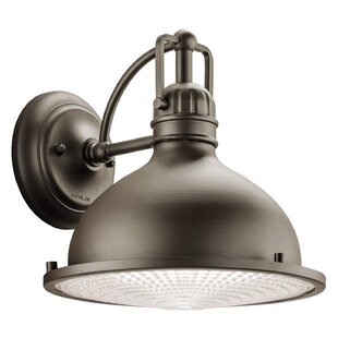 Dov Transitional 1-Light Outdoor Barn Light By Beachcrest Home Outdoor Lighting