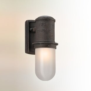 Look for Odelia 1-Light Outdoor Sconce By 17 Stories