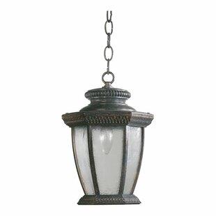 Affordable Price Winn 1-Light Outdoor Hanging Lantern By Fleur De Lis Living