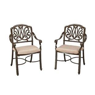 LaMoure Swivel Patio Dining Chair with Cushion (Set of 2)
