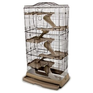 Clean Living Cage 6.0