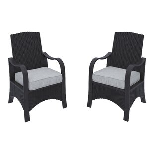 Pence Patio Dining Chair with Cushions (Set of 2)