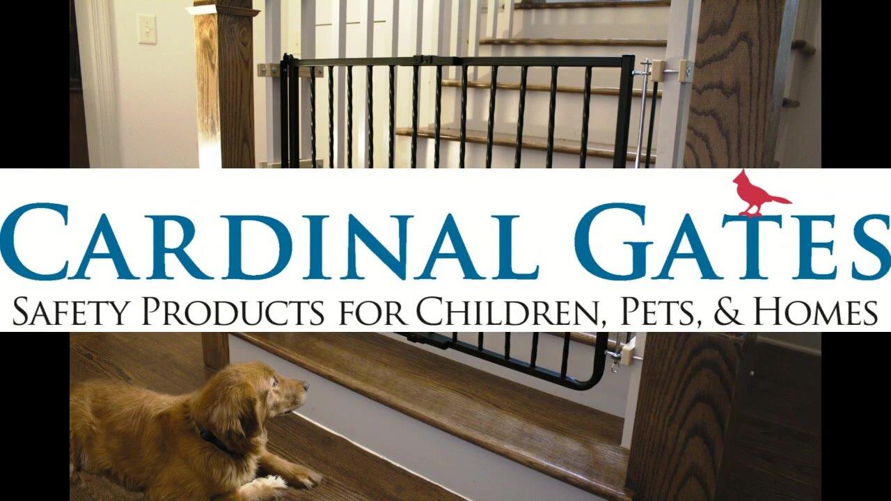 cardinal gates metal décor gate u0026 reviews wayfair