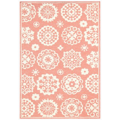4 X 6 Pink Outdoor Rugs You Ll Love In 2020 Wayfair