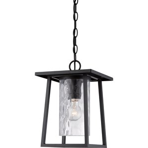 Pacifica 1 Light Outdoor Hanging Lantern