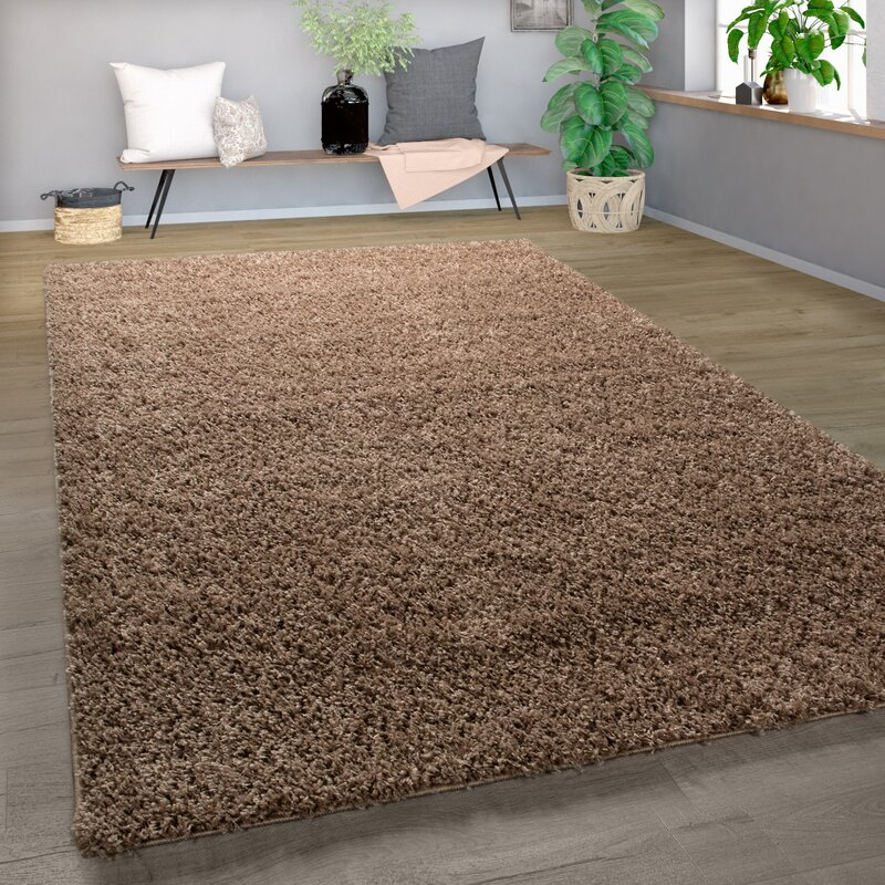Ebern Designs Sonata Shag Light Brown Area Rug Reviews Wayfair