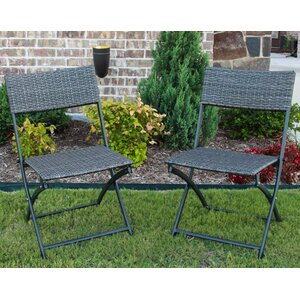 Maryanne Folding Resin Wicker Patio Chair (Set of 2)