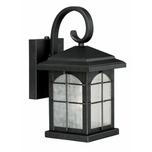 Big Save Feeley 1-Light Outdoor Wall Lantern By Charlton Home