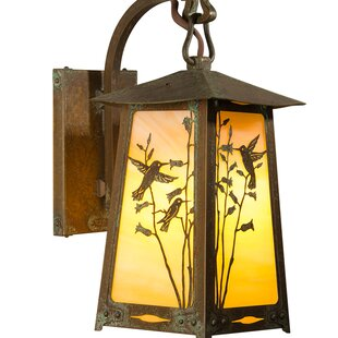 Read Reviews Devaughn 1-Light Outdoor Wall Lantern By August Grove