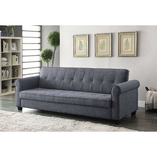 Savings Proto Sleeper Sofa by Winston Porter Reviews (2019) & Buyer's Guide