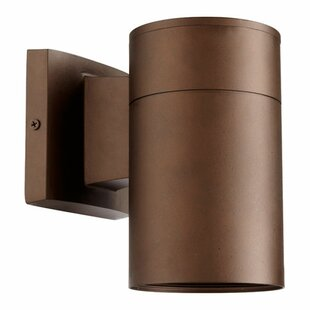 Arter 1-Light Outdoor Metal Sconce
