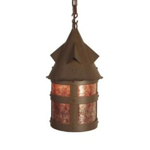Bayview 1-Light Outdoor Hanging Lantern