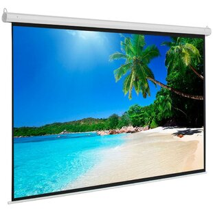 White 776 x 58 Manual WallCeiling Mounted Projector Screen