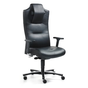 Chefsessel Mycronos aus Leder von Mayer Sitzmöbel
