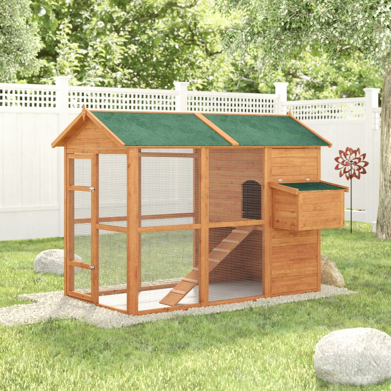 Archie Oscar Auggie Deluxe Large Backyard Chicken Coop With
